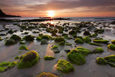 Mossy rocks at a beach in Kudat, Sabah, East Malaysia, Borneo — Stock Photo