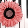 Piano Flower — Stock Photo #21000933