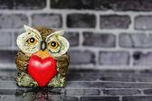 Owl in Love — Stock Photo
