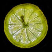 Lemon Light — Stock Photo