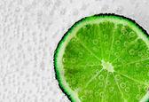 Fizzy Lime — Zdjęcie stockowe
