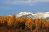 Höstlandskap med snöklädda berg — Stockfoto