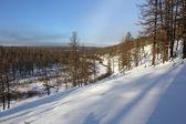 Winter landscape in South Yakutia — Stock Photo