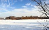 Dia claro de inverno — Foto Stock