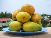 Mangoes Stack — Stock Photo