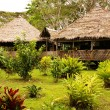 Peru, Peruvian Amazonas landscape. The photo present typical indian tribes settlement in Amazon — Stock Photo