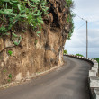 Stock Photo: Scene in portugal island of madeira