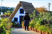 Typical old houses on Santana, Madeira island, Portugal — Stock Photo