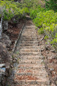 Beautiful mountain trail path near Pico do Arieiro on Madeira island, Portugal — Foto de Stock