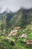 マデイラ島の崖の上の栽培の棚田 — ストック写真