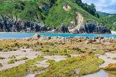 Пляж Баркера, Кантабрия, Испания — Стоковое фото