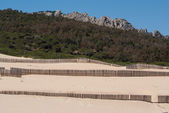 Wooden fences on deserted beach dunes in Tarifa, Spain — Stock Photo