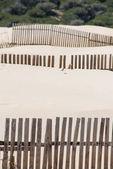 Wooden fences on deserted beach dunes in Tarifa, Spain — Stock fotografie