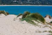 Belle vue sur la plage et l'océan, espagne, tarifa — Photo