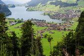 Panoramic view of Grindelwald Village, Switzerland — Stock Photo