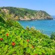 Stock Photo: Beach of Pechon, Cantabria, Spain