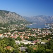 Stock Photo: Kotor old town and BokKotorskbay, Montenegro