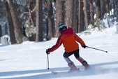 Skiing, winter, woman,men, skiing downhill — Stockfoto