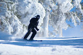 Skiing, winter, woman,men, skiing downhill — Stock Photo