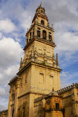 Mezquita Mosque Cathedral bell tower, Cordoba, Cordoba Provinc — Photo