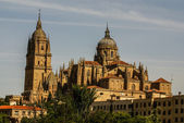 One of the towers of the New Cathedral of Salamanca, Spain, UNES — Stock Photo
