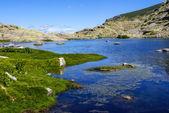 Lake at gredos mountains in avila spain — Stockfoto