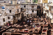 Tanneries of Fes, Morocco, Africa Old tanks of the Fez's tanneri — Photo