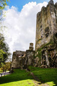 Irish castle of Blarney , famous for the stone of eloquence. Ire — Stock Photo