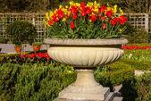 Gardens Muckross Killarney National Park, Ireland — Stock Photo