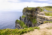 Cliffs of Moher in County Clare, Ireland — 图库照片