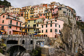 Colorful houses of Manarola Cinque Terre — Stock Photo