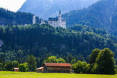 Neuschwanstein castle in Bavarian alps, Germany — Stock Photo