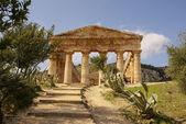 Antik şehir segesta, sicilya yunan tapınağı — Stok fotoğraf