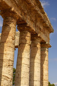 Segesta archaeological site of ancient greece drills Sicily Ital — Stock Photo