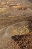 Crateri del vulcano etna in sicilia, italia — Foto Stock