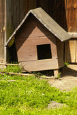 Doghouse in the nature with chain — Stockfoto