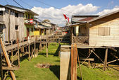 Houses on stilts rise above the polluted water in Islandia Peru — Stock Photo