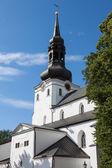 アレクサンドル ・ ネフスキー大聖堂。タリン、エストニア — ストック写真