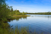 Landscape with lake in  sunny day,Finland — Stock Photo