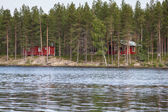 Landscape with lake in  sunny day,Finland — Stok fotoğraf