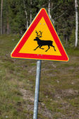 Beautiful scenic road in Norway. Typical warning road sign — Stock Photo
