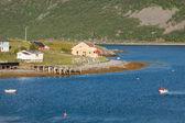 典型的挪威渔村与传统红色挪威木屋就小屋 — 图库照片