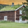 Norwegian typical grass roof country house — Stock Photo #45769529