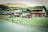 Noorse typische gras dak landhuis — Stockfoto