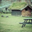 Norwegian typical grass roof country house — Stock Photo #45770009