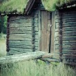 Norwegian typical grass roof country house — Stock Photo #45770157
