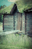 Norwegian typical grass roof country house — Stock Photo
