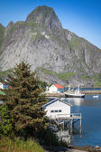 Picturesque fishing town of Reine by the fjord on Lofoten island — Stock Photo
