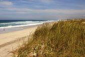 Пляж на побережье Атлантического океана вблизи Фурадуро, Португалия — Стоковое фото