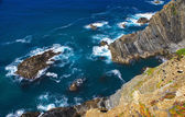 Atlantic ocean coast cliff at Sardao cape (Cabo Sardao), Alentej — Stock Photo